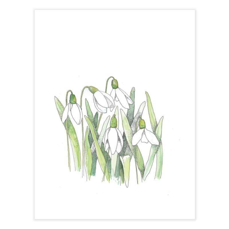 Snowdrops Home Fine Art Print by LauraStockwell's Artist Shop