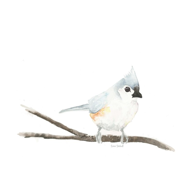 Tufted Titmouse by LauraStockwell's Artist Shop