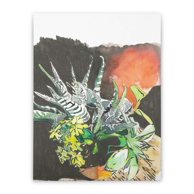 Succulents in Sun Home Stretched Canvas by LauraStockwell's Artist Shop
