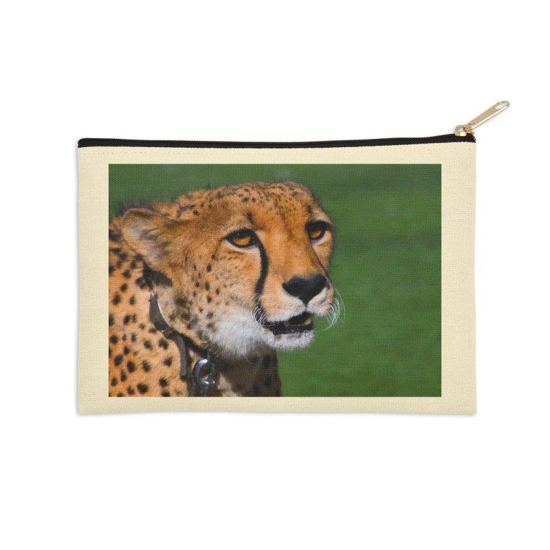Cheetah from Safari Park in San Diego   by LlamapajamaTs's Artist Shop