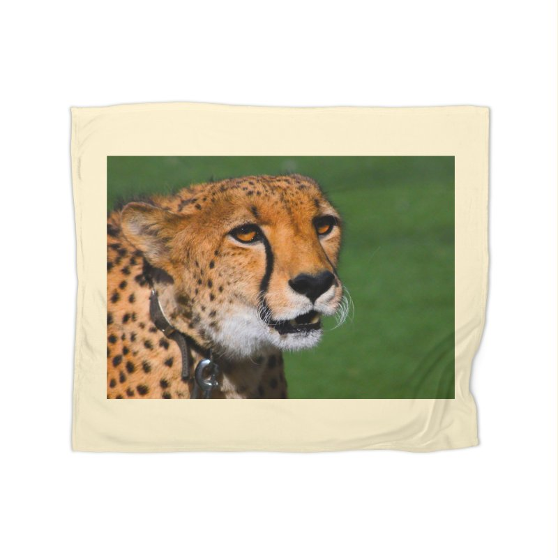 Cheetah from Safari Park in San Diego Home Blanket by LlamapajamaTs's Artist Shop