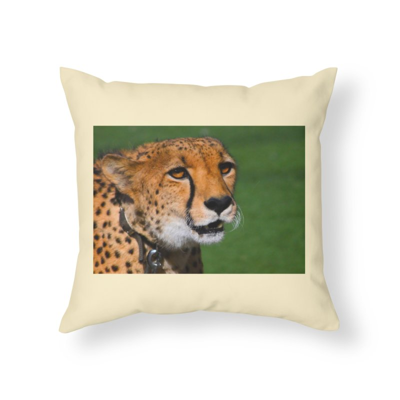 Cheetah from Safari Park in San Diego Home Throw Pillow by LlamapajamaTs's Artist Shop