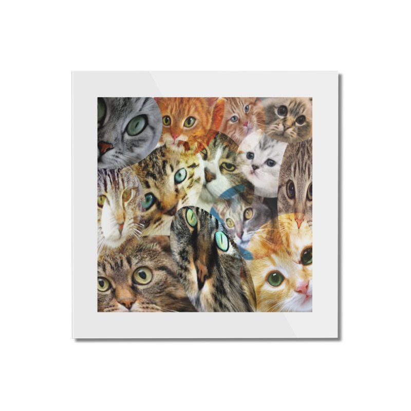 For the Love of Cats Home Mounted Acrylic Print by Loganferret's Artist Shop