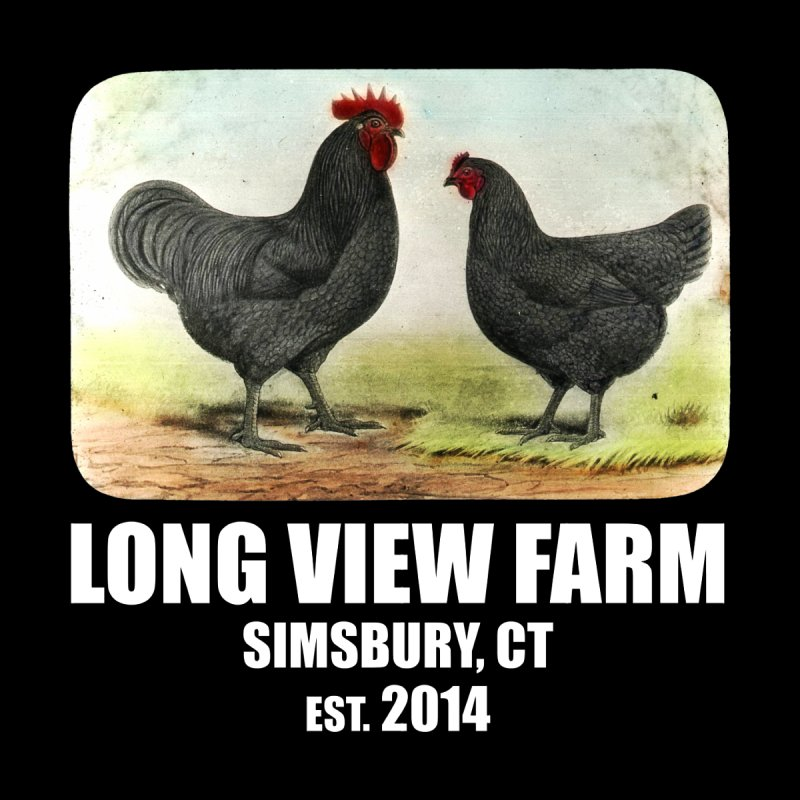 Long View Farm Ontario Picture Bureau Black Giants T-Shirt by Long View Farm