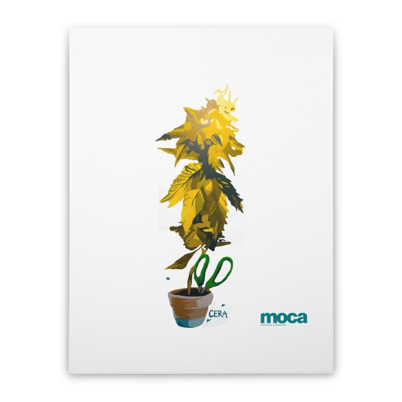 Cera Home Stretched Canvas by MOCA