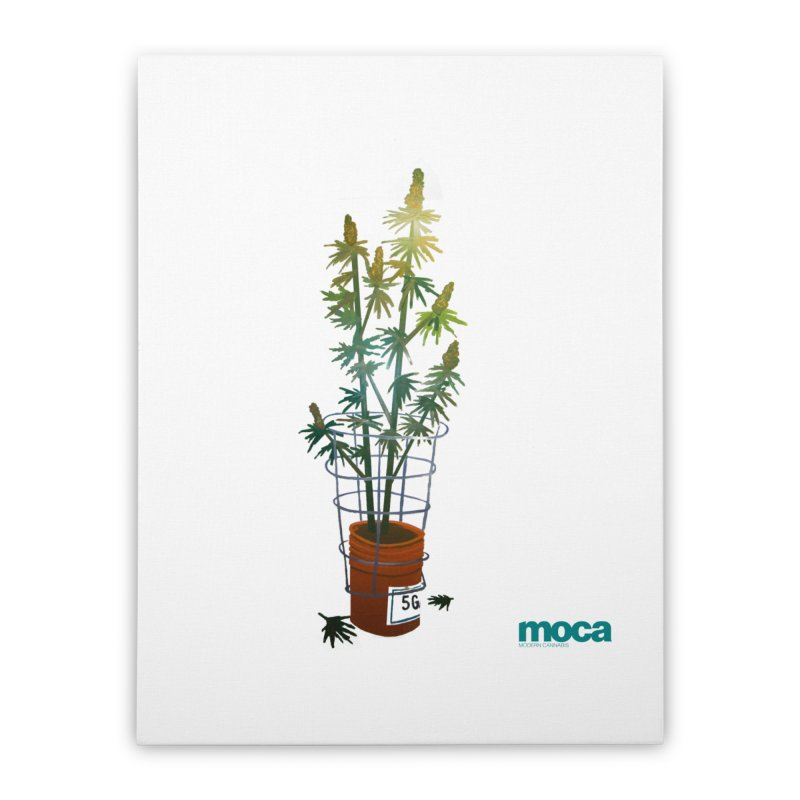Ethan Stuart Home Stretched Canvas by MOCA