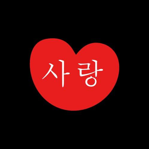 Design for LOVE 사랑 Korean Heart T-shirt