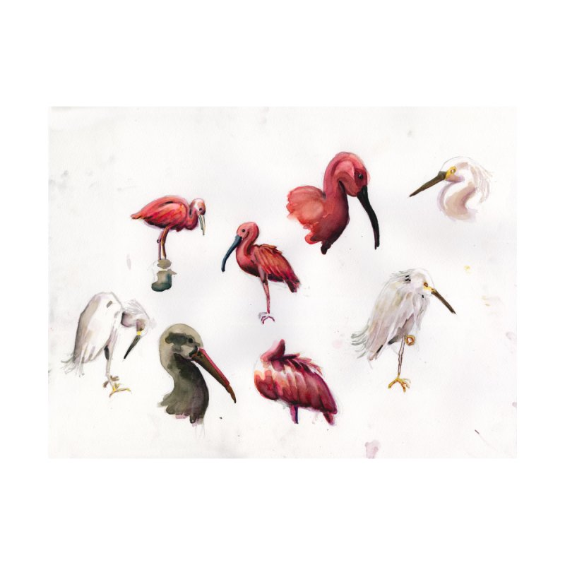 Snowy Egret and Assorted Ibises by Madeleine Hettich Design & Illustration
