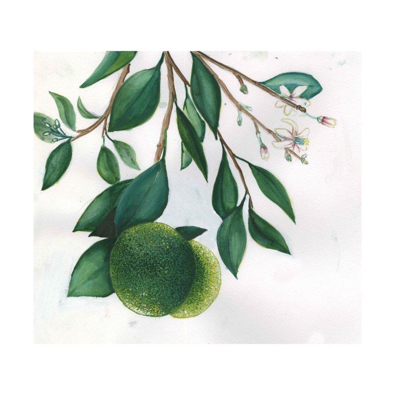 Grapefruit by Madeleine Hettich Design & Illustration