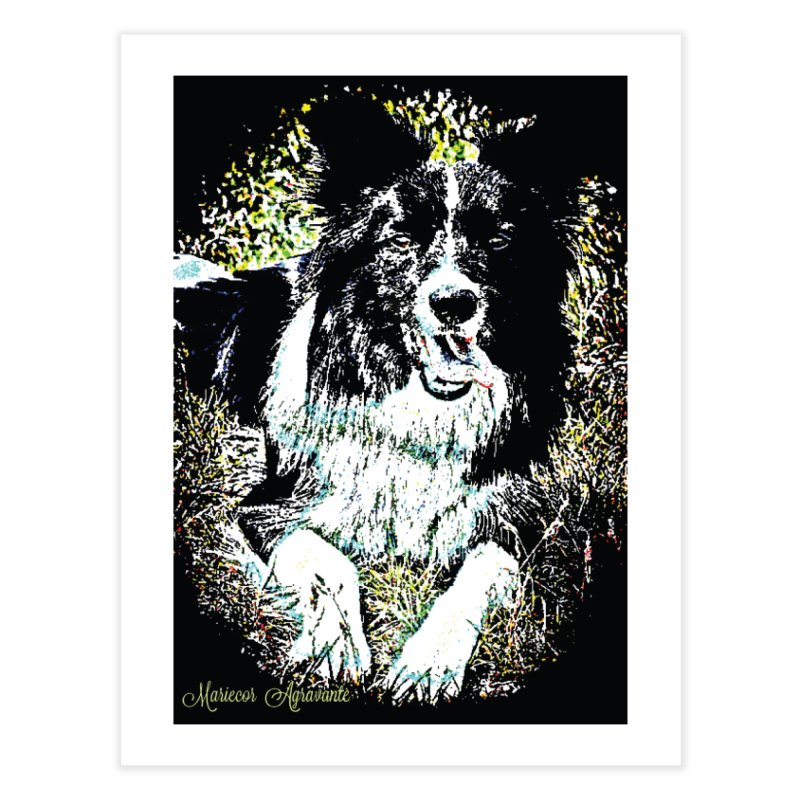 Border Collie Home Fine Art Print by MariecorAgravante's Artist Shop