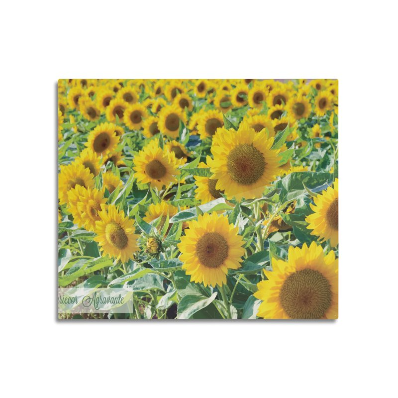 Landscape Sunflower Field Home Mounted Aluminum Print by MariecorAgravante's Artist Shop