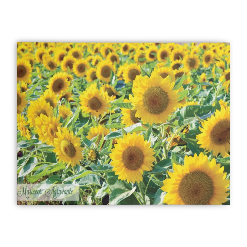 Landscape Sunflower Field Home Stretched Canvas by MariecorAgravante's Artist Shop