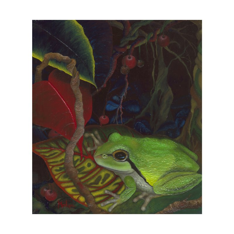 Frog In Twisty Woods by MarlaenaShannon's Artist Shop