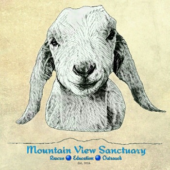 Mountain View Sanctuary's Official Store Logo