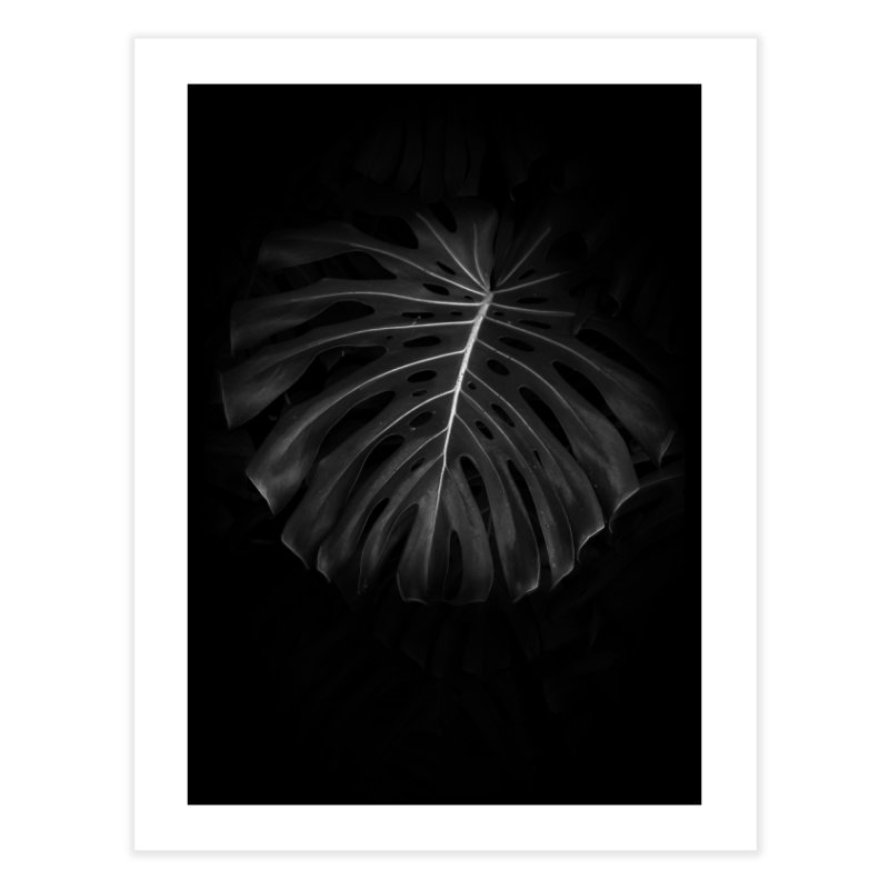 Branch in Fine Art Print by Mrc's Artist Shop