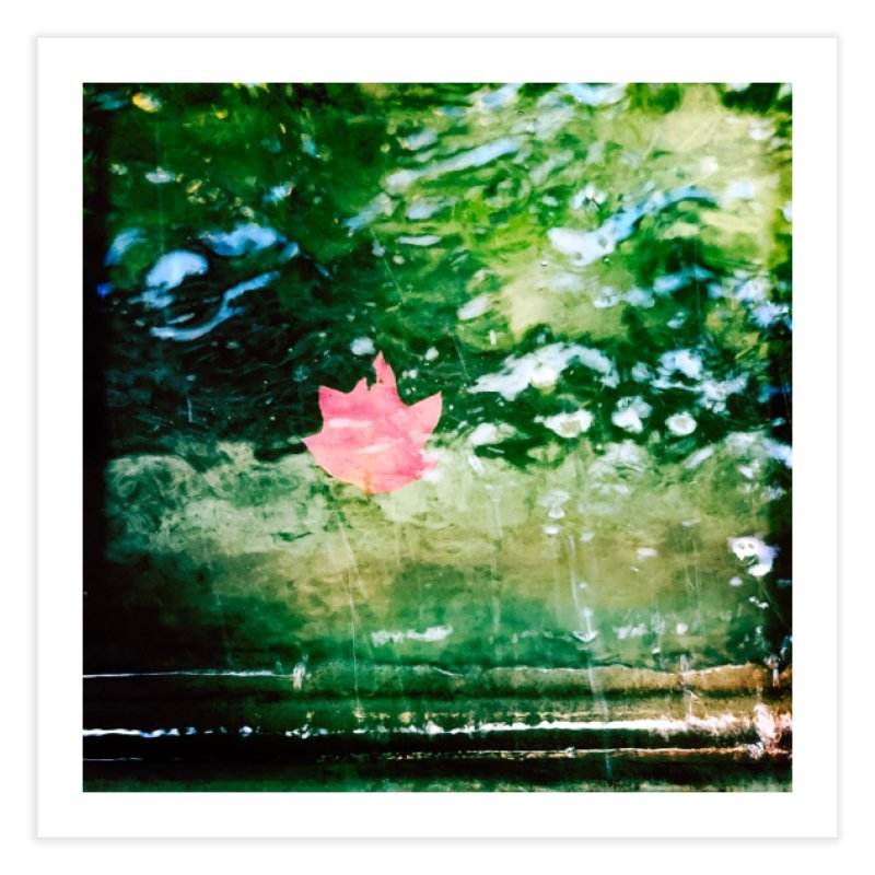 Leaf On The Water Home Fine Art Print by NadineMorgan's Artist Shop