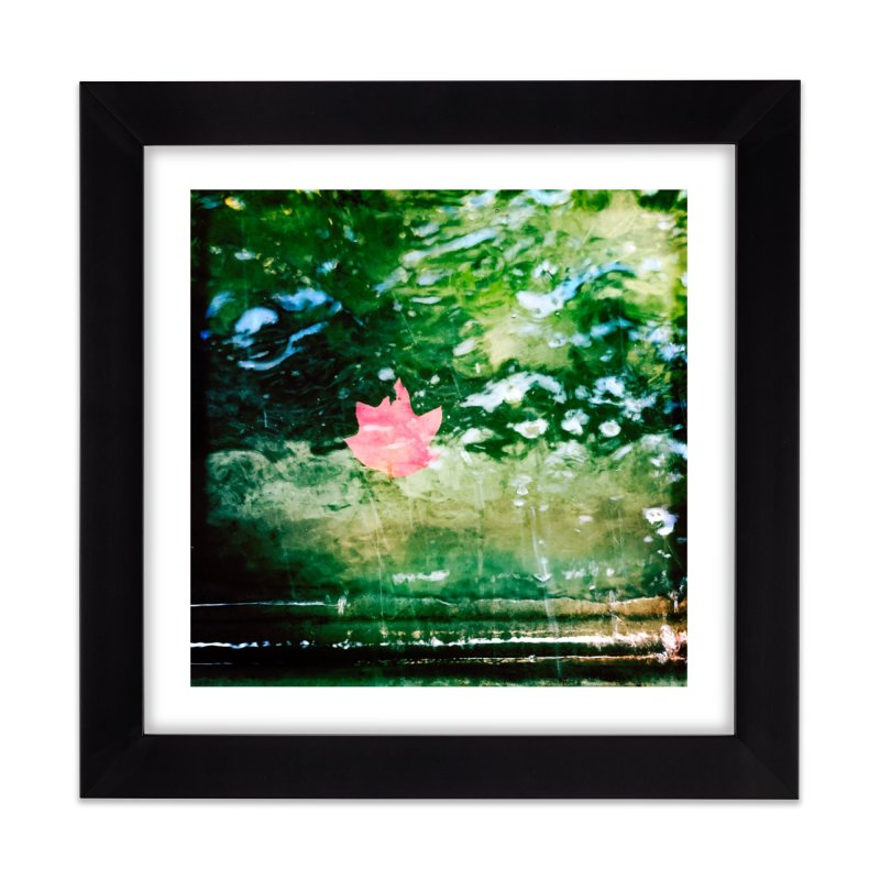 Leaf On The Water Home Framed Fine Art Print by NadineMorgan's Artist Shop