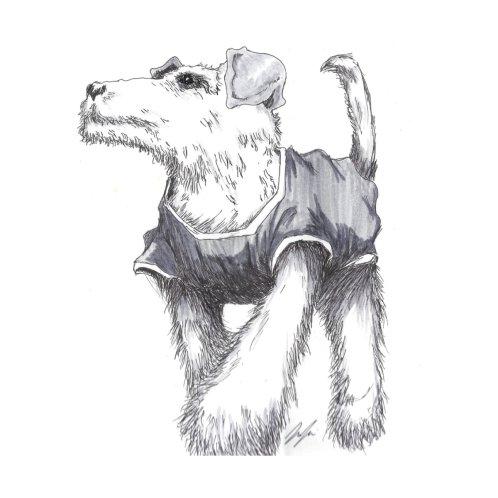 Design for Chill Dog