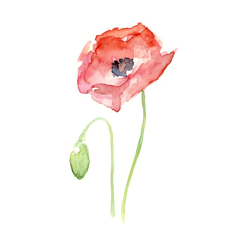 Red Poppy by Art by Olga Shvartsur