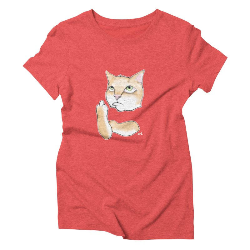 Cattitude Women's Triblend T-Shirt by Patrick Arena Art's Artist Shop