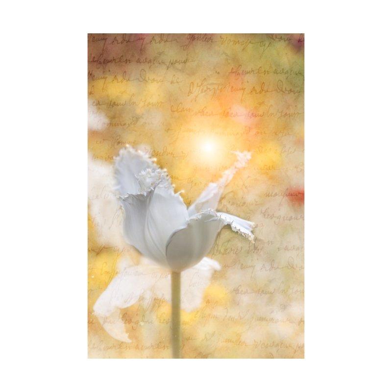 Sun White Flower Love Letter by Phototrinity's Wall Art Shop