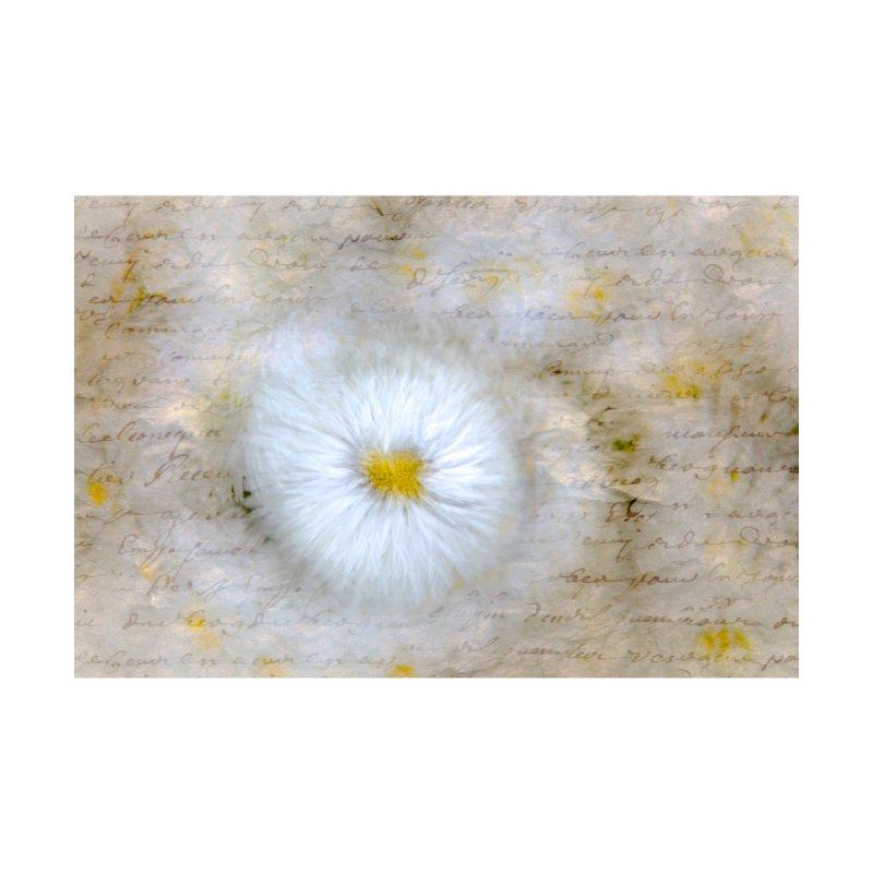 Daisy Dream Love Letter by Phototrinity's Wall Art Shop