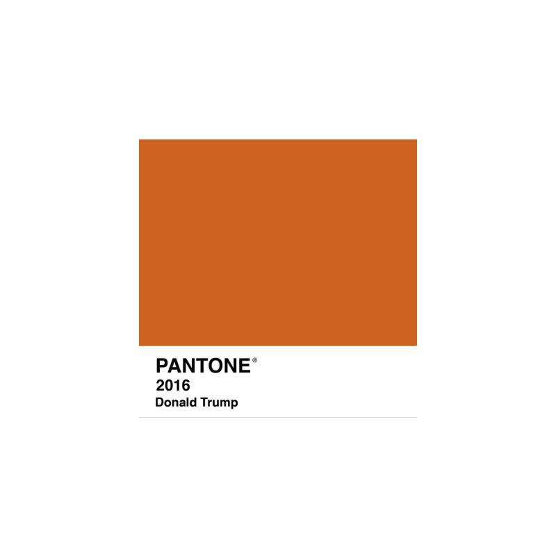 Donald Trump Pantone by PRINTMEGGIN