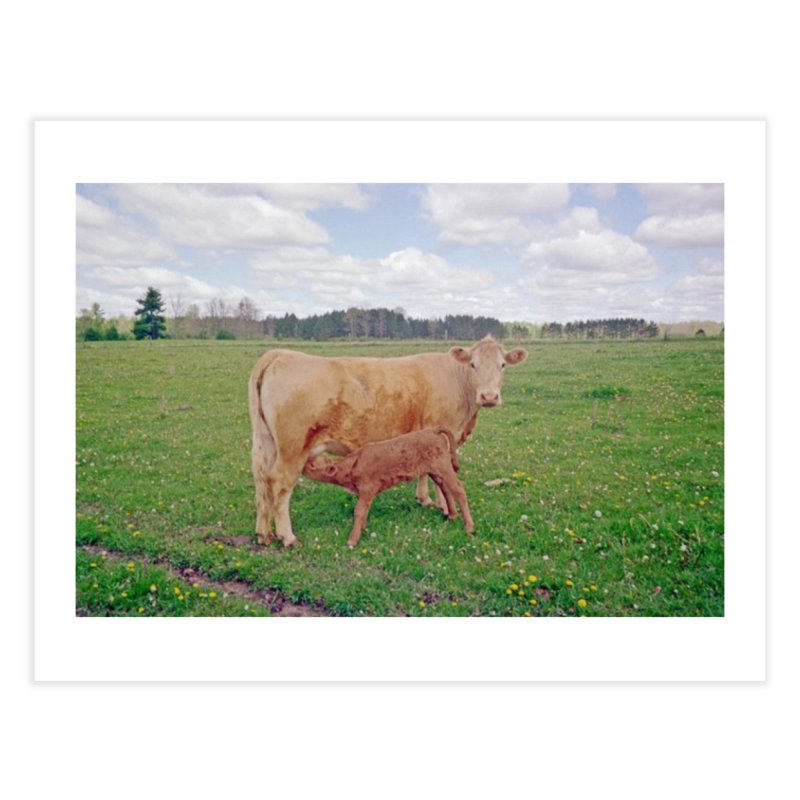 Cow and Baby Home Fine Art Print by RLGarts's Artist Shop