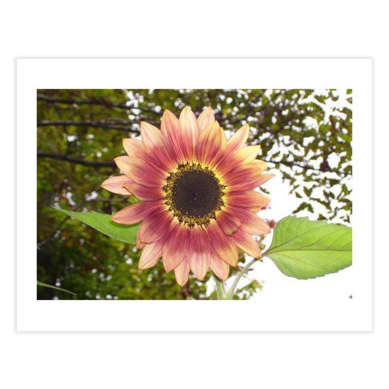 Pink Sunflower Home Fine Art Print by RLGarts's Artist Shop
