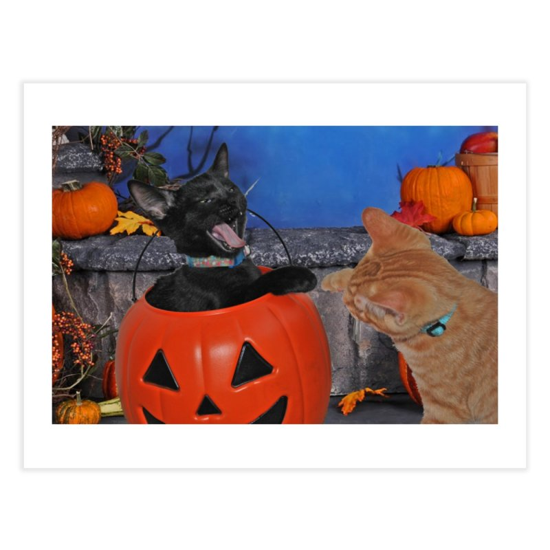Halloween Kittens Home Fine Art Print by RLGarts's Artist Shop