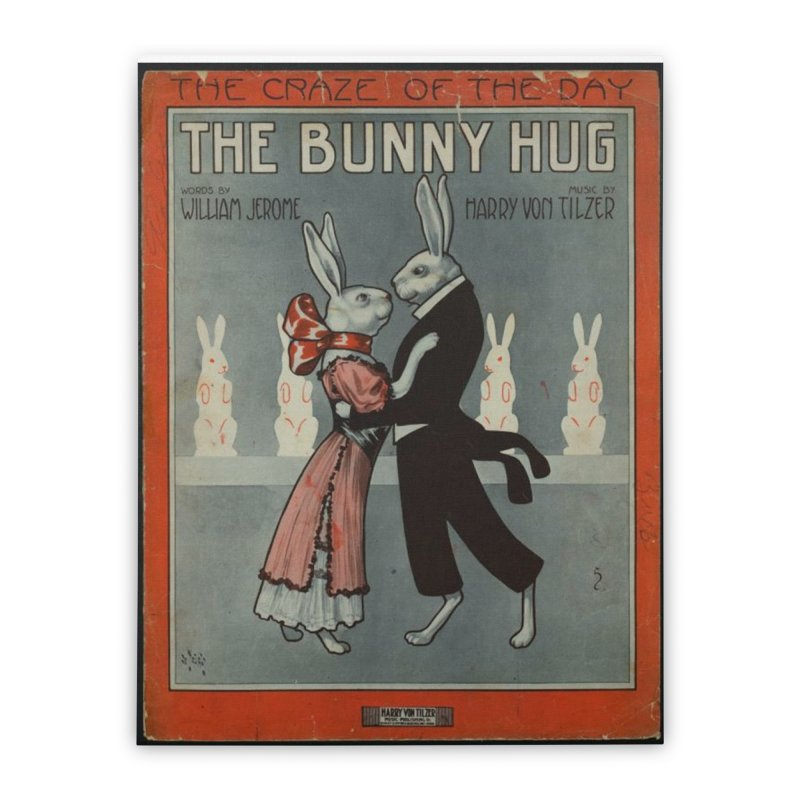 Bunny Hug Home Stretched Canvas by RNF's Artist Shop