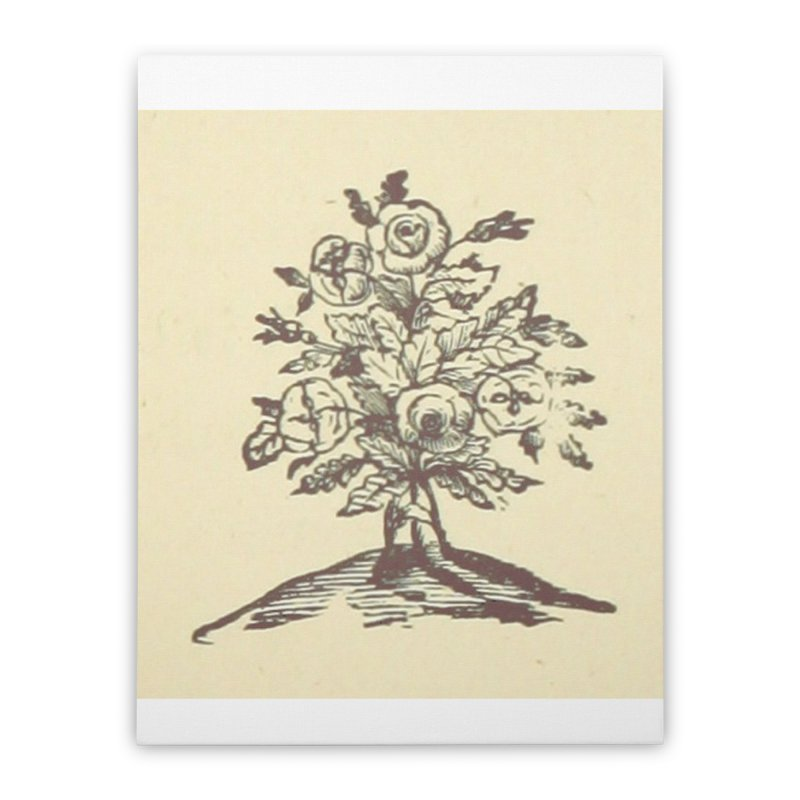 Rose Home Stretched Canvas by RNF's Artist Shop