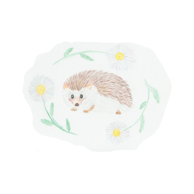 Happy Little Hedgehog by Rachel Mambach Art Shop