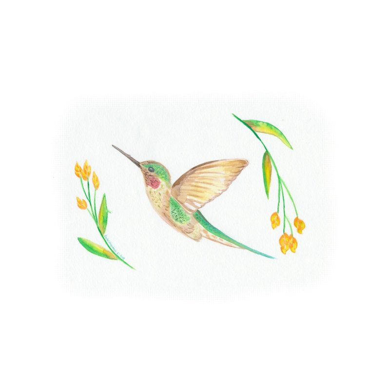 Delightful Hummingbird by Rachel Mambach Art Shop