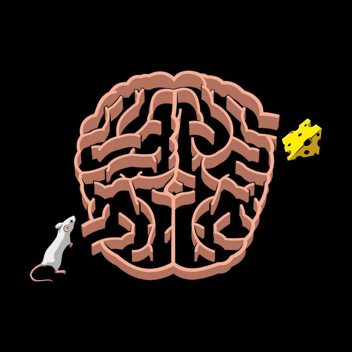 коснулась своим картинки мозг лабиринте того, как