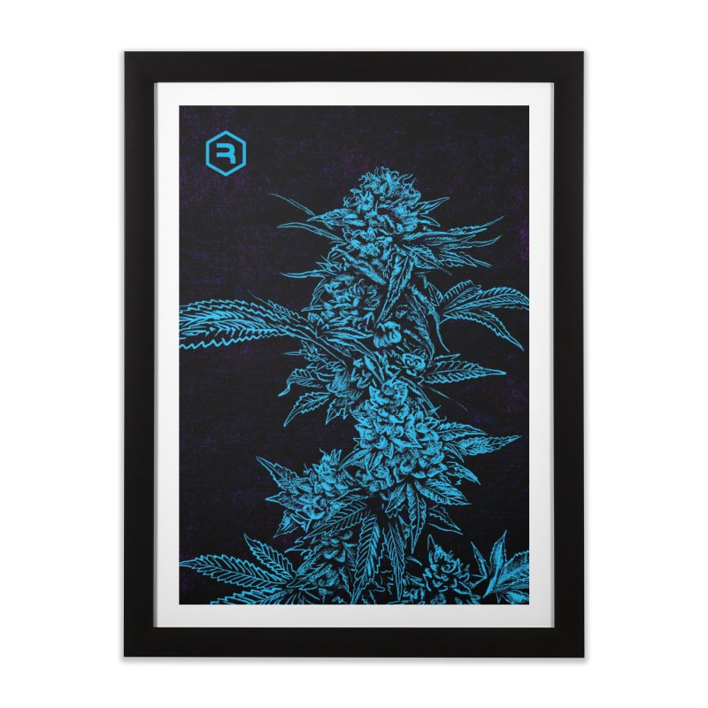 Climbing Cola in Framed Fine Art Print Black by RevolutionTradingCo