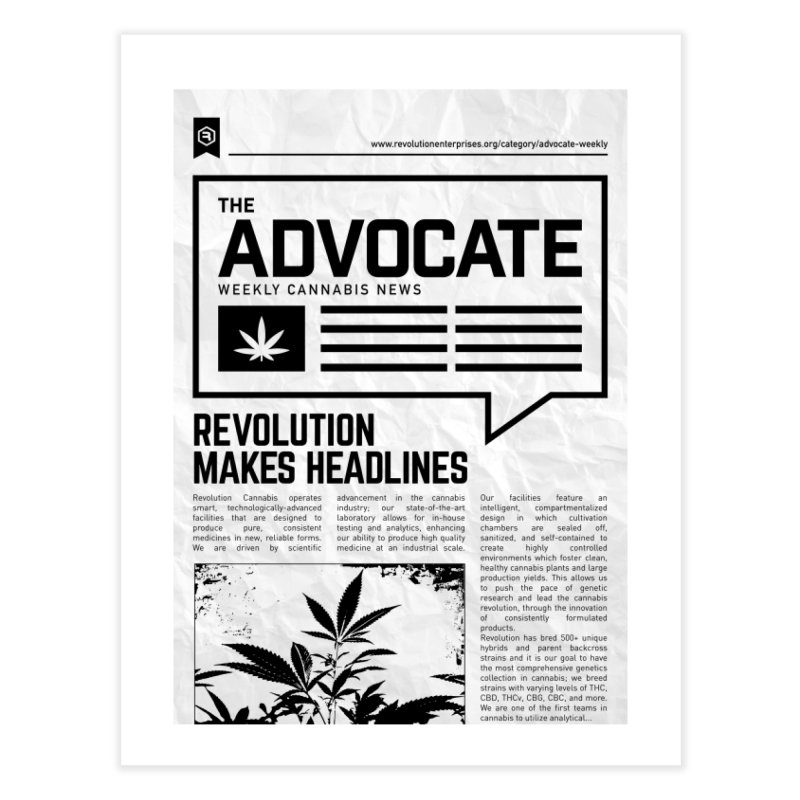 The Advocate Home Fine Art Print by RevolutionTradingCo