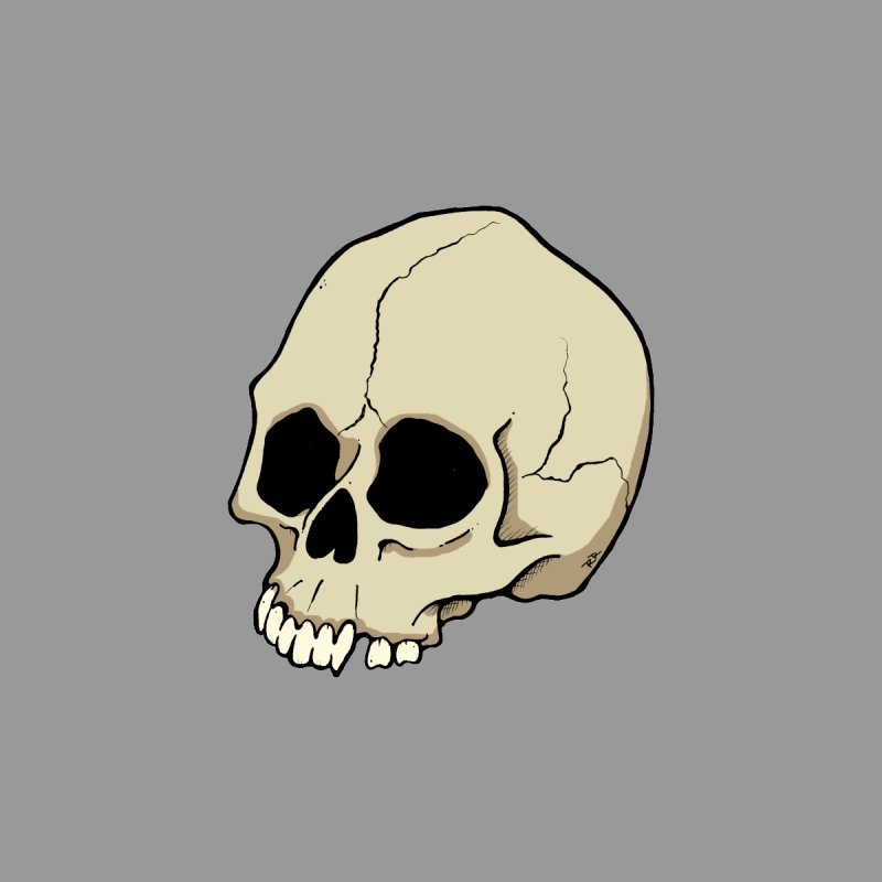 Skull by RichRogersArt