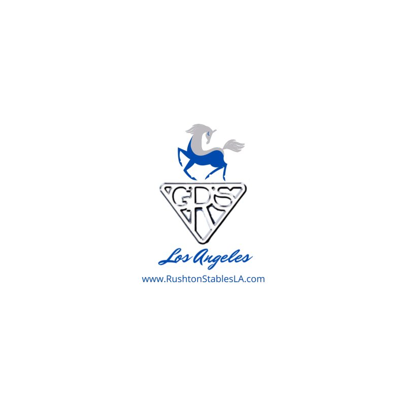 Silver and Blue Dancing Horse Logo Men's T-Shirt by RushtonStablesLA's Artist Shop