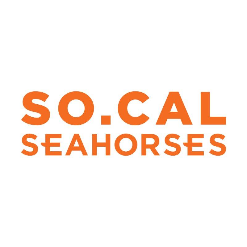 Seahorse Wordmark - Orange Men's Pullover Hoody by SEAHORSE SOCCER's Artist Shop