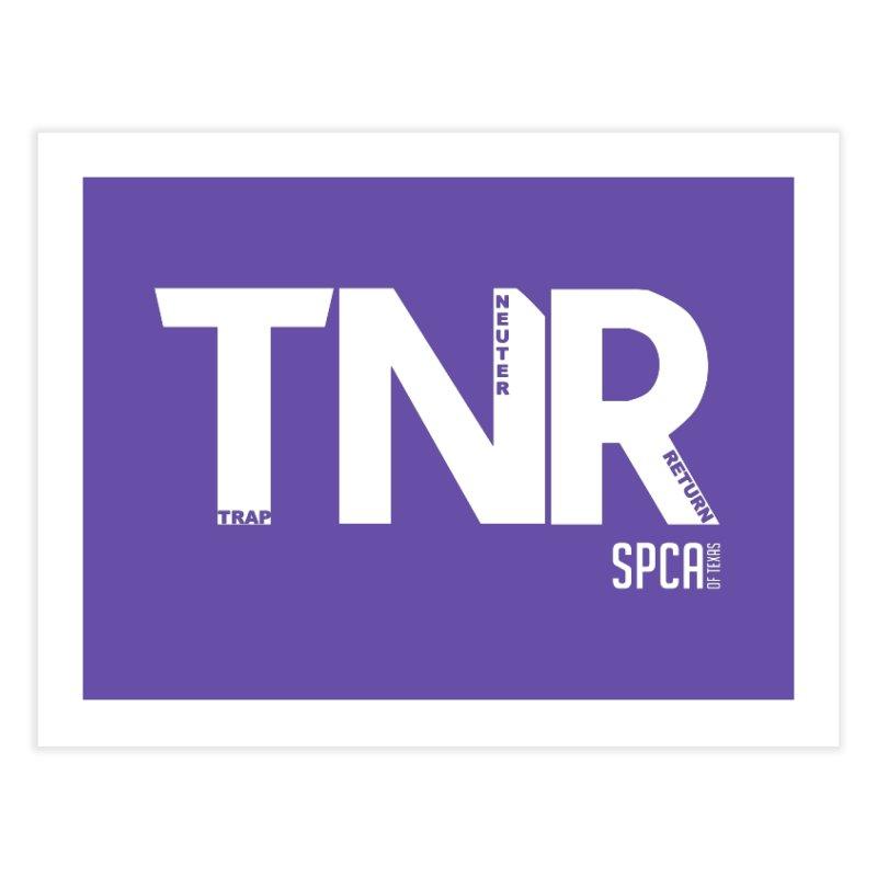 TNR - Trap Neuter Return Home Fine Art Print by SPCA of Texas' Artist Shop
