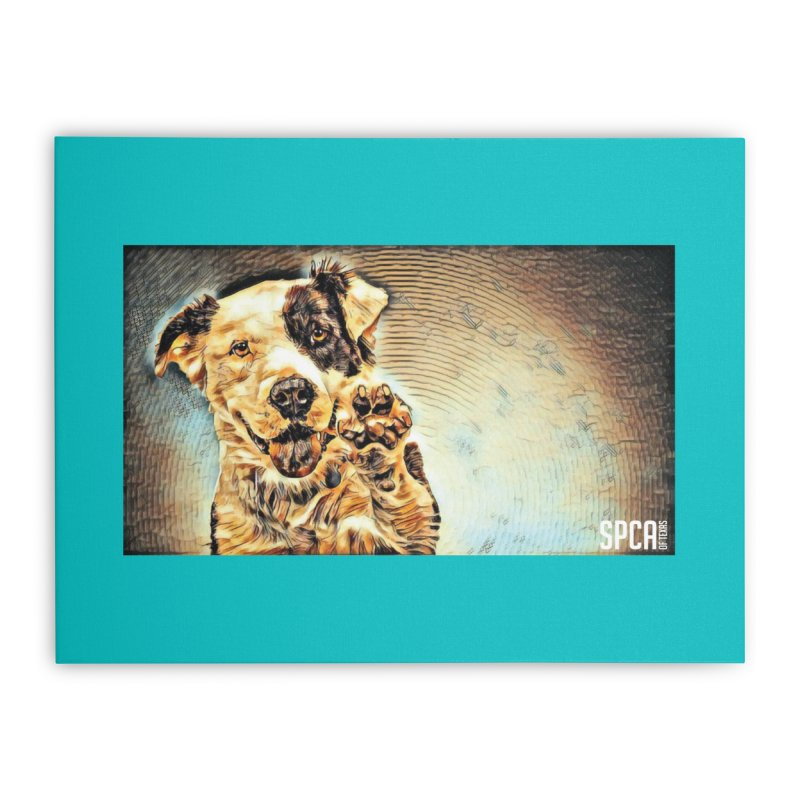 High Five Home Stretched Canvas by SPCA of Texas' Artist Shop
