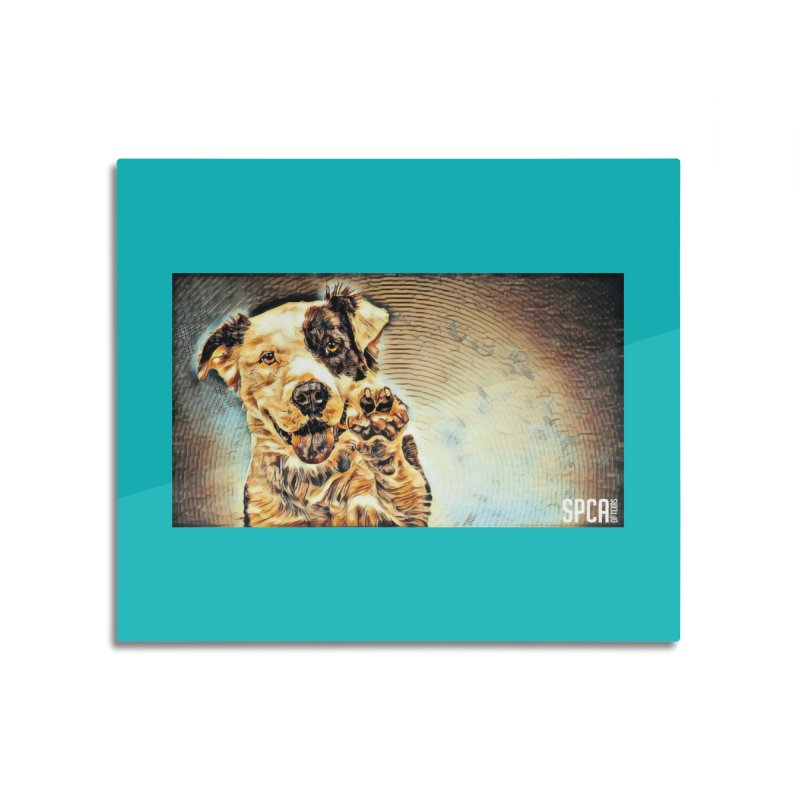 High Five Home Mounted Aluminum Print by SPCA of Texas' Artist Shop