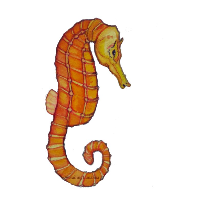 Charlie the Cranky Seahorse None  by Sailing Luna Sea's Swag Shop