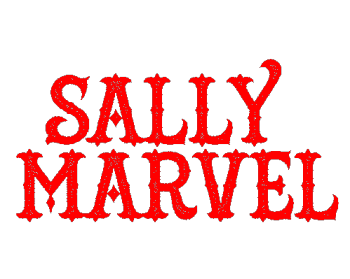 Sallymarvel's Shop Logo