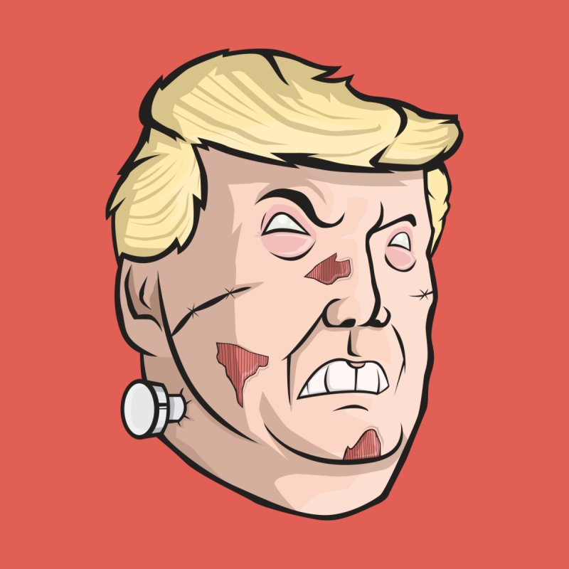 Trump-instein None  by Sheepdogdesign's Artist Shop