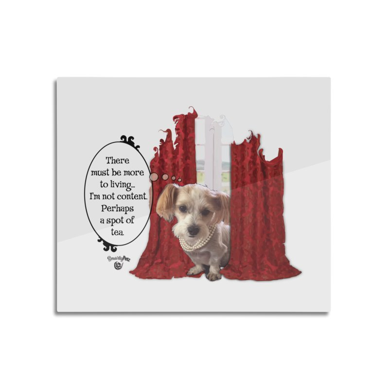 I'm not content Home Mounted Acrylic Print by SmartyPetz's Artist Shop