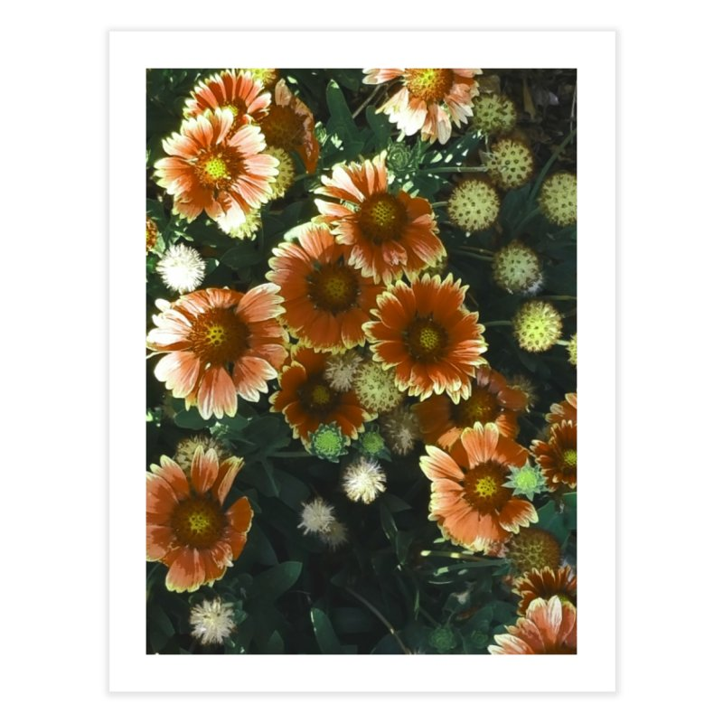 Peached Flowers Huntington Series Home Fine Art Print by Soapboxy Boutique