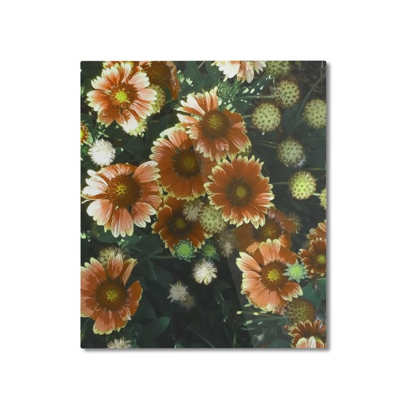 Peached Flowers Huntington Series Home Mounted Aluminum Print by Soapboxy Boutique