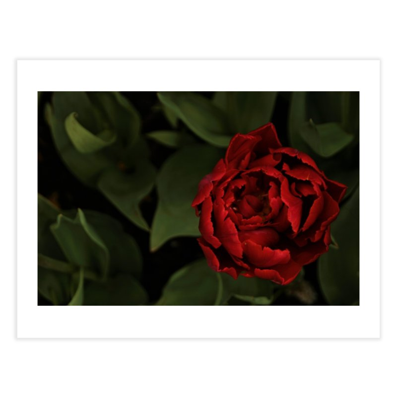 Rose   by Soulstone's Artist Shop